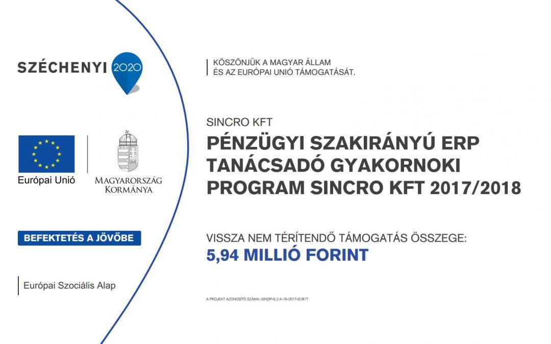 Pénzügyi szakirányú ERP tanácsadó gyakornoki program Sincro kft 2017/2018